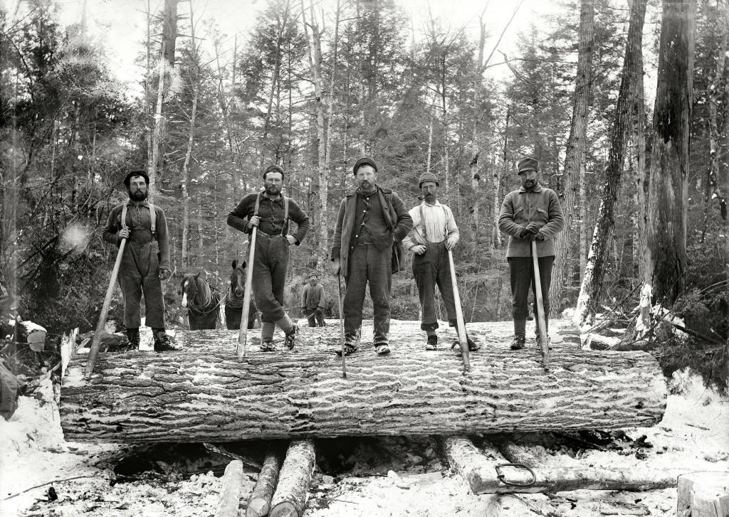 im-a-lumberjack-1899